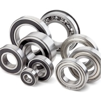 Carisma SCA-1E Bearing set