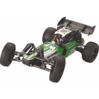 Haiboxing Wild Killer Brushed 2wd 1/10th Buggy RTR